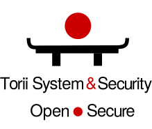 Logo Info Sec by Torii System & Security